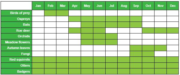 Kielder Wildlife Calendar